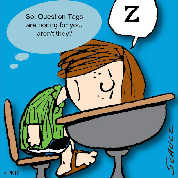Introducing Question Tags Using What You Know About Your Students. Introducing Question Tags Using What You Know About Your Students. Worksheet. Worksheet Question Tags English At Mspartners.co