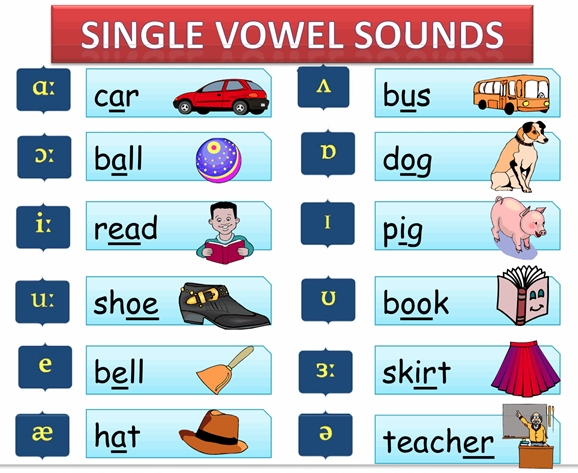 EXERCISES WITH VOWELS